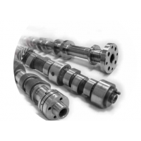 Newman High Performance Pair of Camshafts to suit Ford Zetec 1.8/2.0 Silvertop